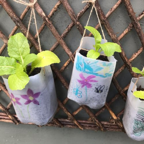 Hanging planters made from plastic milk bottles