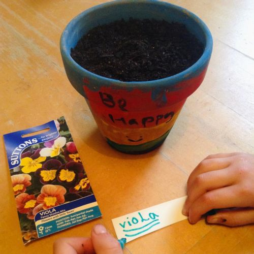 Painted pot, label and viola seeds